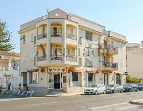 apartments sale in pollensa