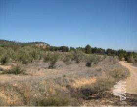 lands sale in requena