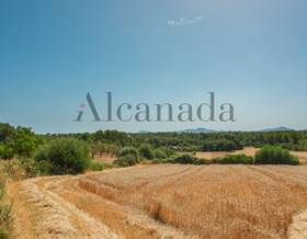 lands sale in can picafort
