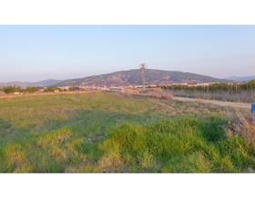 lands sale in pinoso