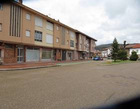 premises sale in salinas de pisuerga