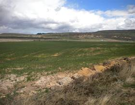 lands sale in pradanos de ojeda