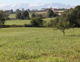 lands sale in llanera