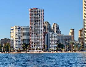 apartments rent in alicante province