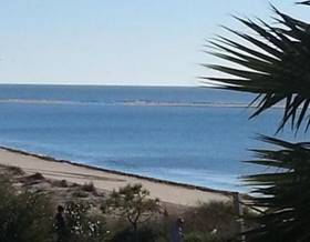 apartments rent in ayamonte