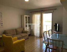 apartments rent in guia de isora