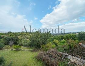 lands sale in campanet