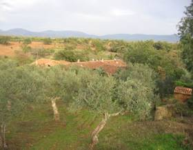 lands sale in caceres province