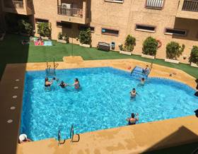 apartments rent in villaricos