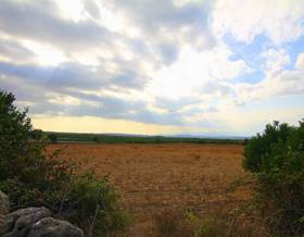 lands sale in ariany