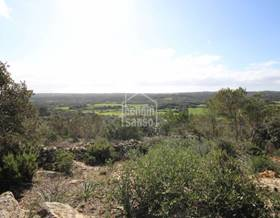 lands sale in mahon