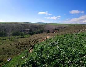lands sale in salamanca province