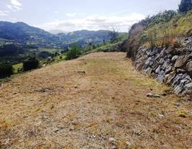 lands sale in candamo