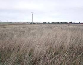 lands sale in pelabravo